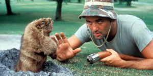 Bill Murray In 'Caddyshack'